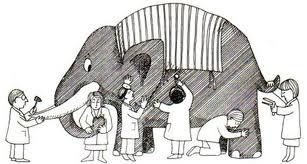 Ciegos y Elefante