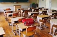 primary school (2)